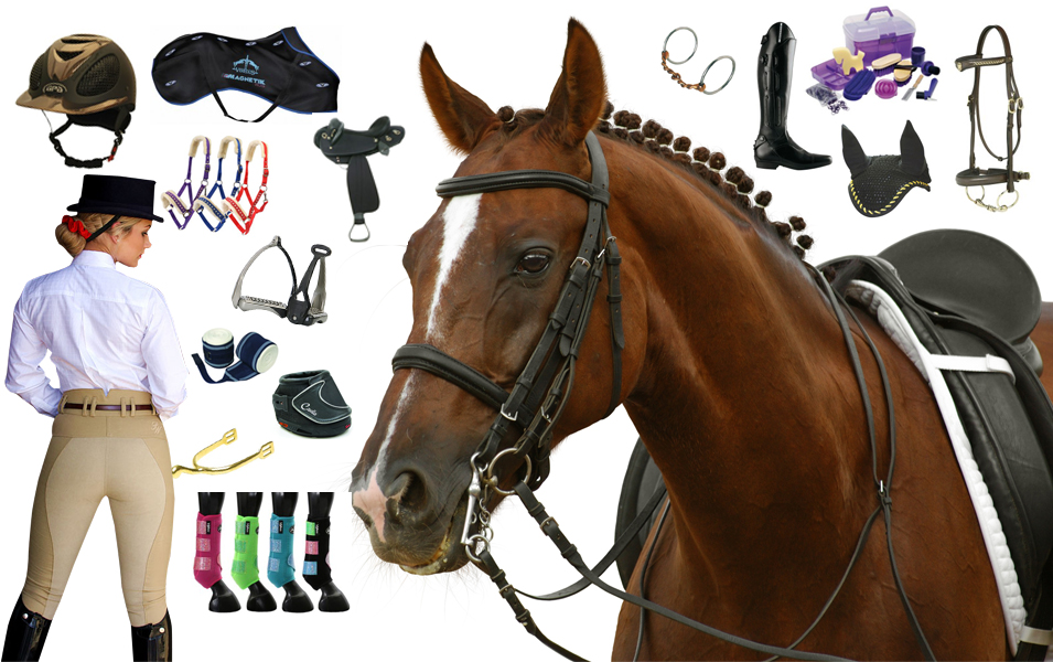 WELCOME to OZ HORSE INFO SADDLERY CO